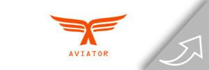 Aviator Akkuträger